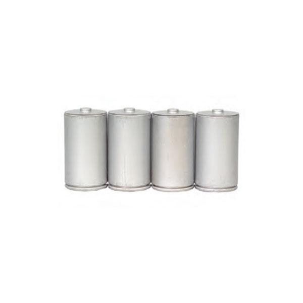 Alkaline Battery D